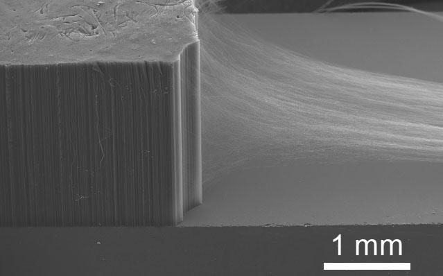 Carbon Nanotube Laboratory